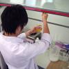 研究内容はDNA修復と農薬耐性の発生機構の解明