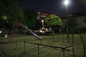 夜の公園デート