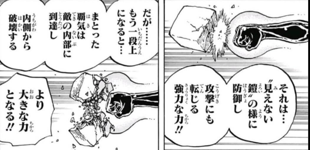 ワンピース 覇気(流桜)