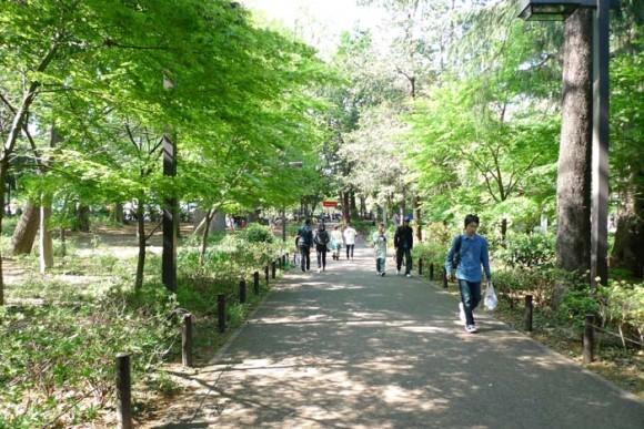 目黒 林試の森公園