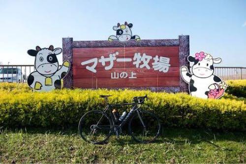 千葉 マザー牧場 観光