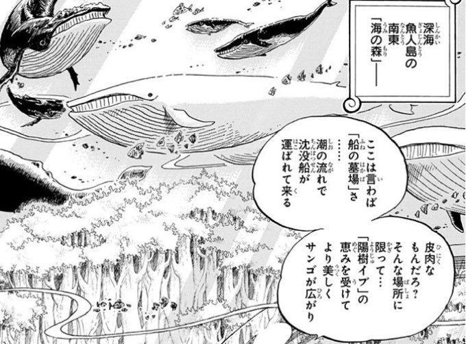ワンピース 魚人島 伏線