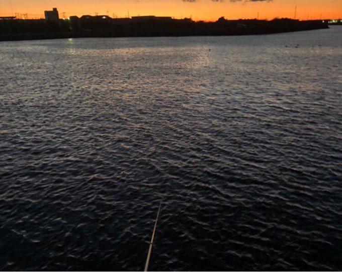 銚子 第三漁港 夜釣り